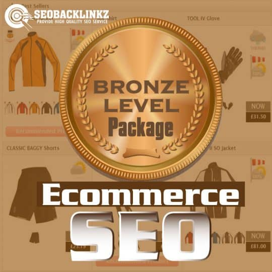 Ecommerce SEO - Bronze package